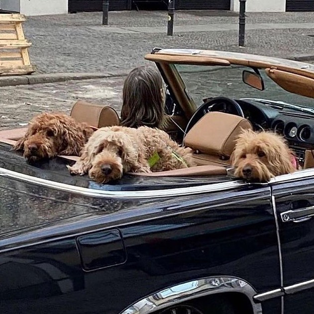 Going on a road trip with my mates
